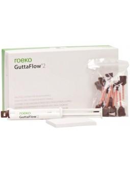 GuttaFlow 2 Kit d'introduction